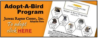 JRC-Adopt-a-Bird